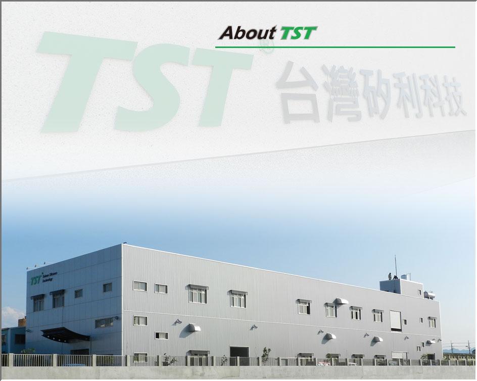 Taiwan Silicone Technology